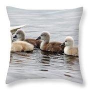 Follow Mom Throw Pillow