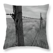 Follow The Wire Throw Pillow