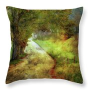 Following My Vision Throw Pillow