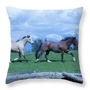 Following The Bay Throw Pillow
