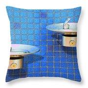 Fontaine Bleue Throw Pillow