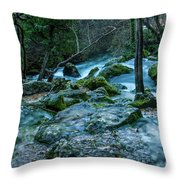 Fontaine De Vaucluse IIII Throw Pillow