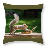Food Fight Squirrel And Chipmunk Throw Pillow