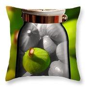 Food Fruit Figs 1 Throw Pillow