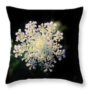 Fools Parsley  Throw Pillow