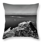 Foot Of 9th Line South Bw  Throw Pillow