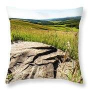 Foothills View Throw Pillow