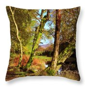 Footpath At The Edge Of Lantys Tarn In The Lake District Cumbria Throw Pillow