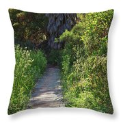 Footpath In Peters Canyon I Throw Pillow