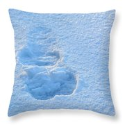 Footprint In The Snow Throw Pillow