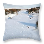 Footprints In The Snow V Throw Pillow