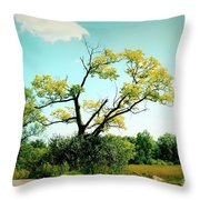 For A Moment - 02a Throw Pillow