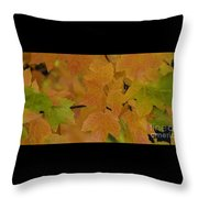 For Every Season There Is A Color Throw Pillow