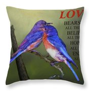 For Love Of Bluebirds And Scripture Throw Pillow