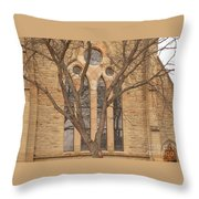 For Reflection Throw Pillow
