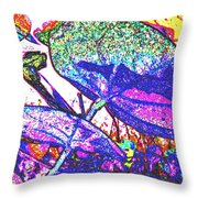 For Sun Lovers Throw Pillow