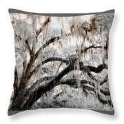 For The Grace Of The Beauty Of A Aged Tree Throw Pillow