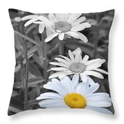 For The Love Of Daisy Throw Pillow