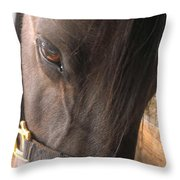 For The Love Of Grain Throw Pillow