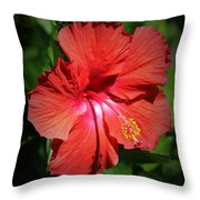 For The Love Of Hibiscus Throw Pillow
