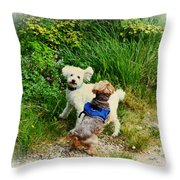 For The Love Of Troy Throw Pillow