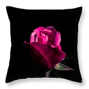 For You My Dear Throw Pillow