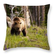 Foraging Grizzly Throw Pillow
