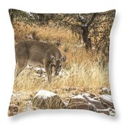 Foraging In The Snow Throw Pillow