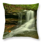Forbes State Forest Cole Run Cave Falls Throw Pillow