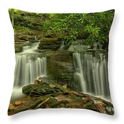 Forbes State Forest Twin Falls Throw Pillow