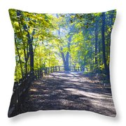 Forbidden Drive - Philadelphia Throw Pillow
