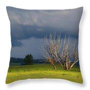 Forbidding Skies Throw Pillow