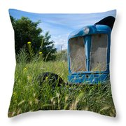 Fordson Deisel Throw Pillow