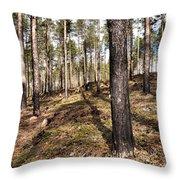 Forest Next Summer After A Fire Throw Pillow