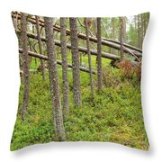 Forest After Storm - Fall Pines In Wild Forest Throw Pillow