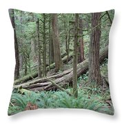 Forest And Ferns Throw Pillow