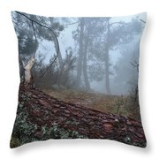 Forest And Fog In Serra Da Estrela Throw Pillow