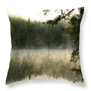 Forest And Fog Throw Pillow