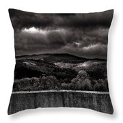 Forest Behind The Wall Throw Pillow