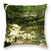 Forest Bridge Throw Pillow