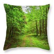 Forest Byway Throw Pillow