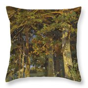 Forest Clearing Throw Pillow