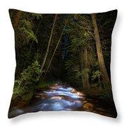 Forest Creek Throw Pillow