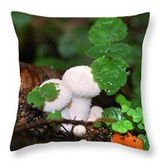 Forest Fairy Tale Throw Pillow