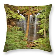 Forest Falls Throw Pillow