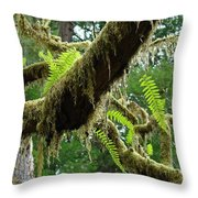 Forest Ferns Art Prints Fern Giclee Prints Baslee Troutman Throw Pillow
