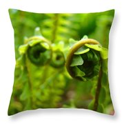 Forest Ferns Fine Art Photography Art Prints Baslee Troutman Throw Pillow