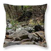 Forest Floor Near Oak Creek Throw Pillow