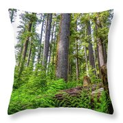 Forest Floor Of Hoh Rain Forest Throw Pillow