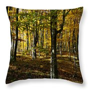 Forest Floor Two Throw Pillow